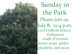 Sunday in the Park, July 8, 2012-Lord Dufferin School, Parliament south of Gerrard, from noon